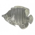 Trigger Fish *CLEARANCE ITEM*