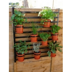 Free Instruction Sheet - Design Project for Hanging Garden